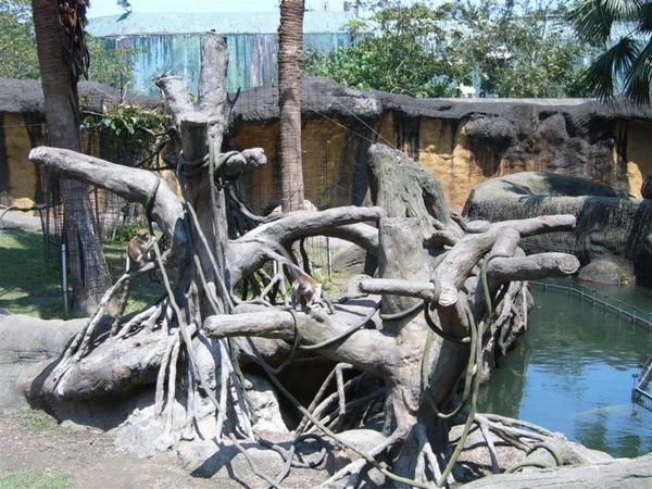 熱帶動物館