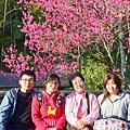2014.02.01 光媽光姊車埕之旅11.JPG
