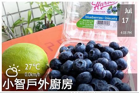 2014.07.17 藍莓果醬1.jpg