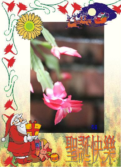 怪客送的聖誕賀卡1