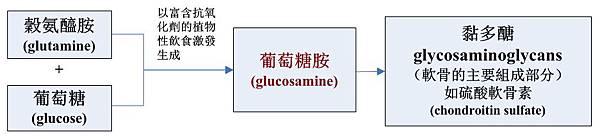 葡萄糖胺合成