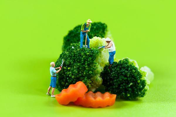 figurine-farmers-harvesting-broccoli_MJXC6tRu.jpg