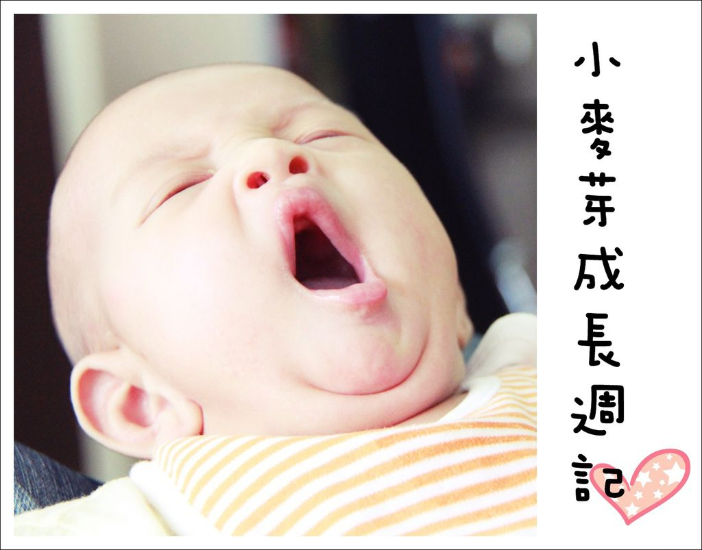 Blog07.jpg