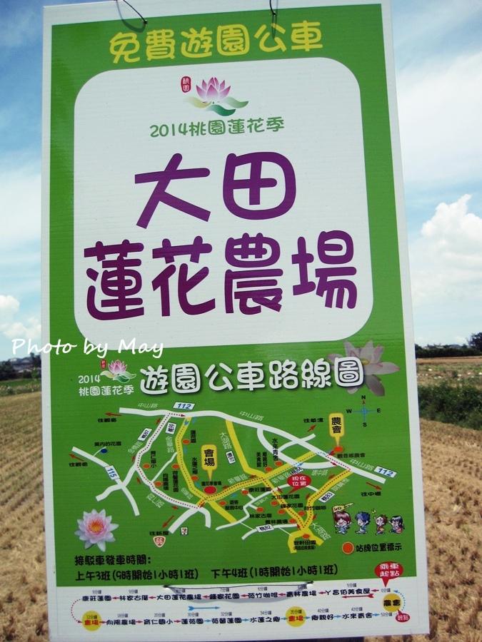 blog_20140719_04.JPG