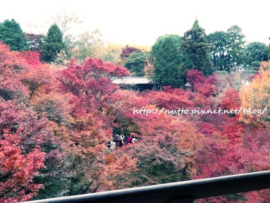 blog_21.JPG