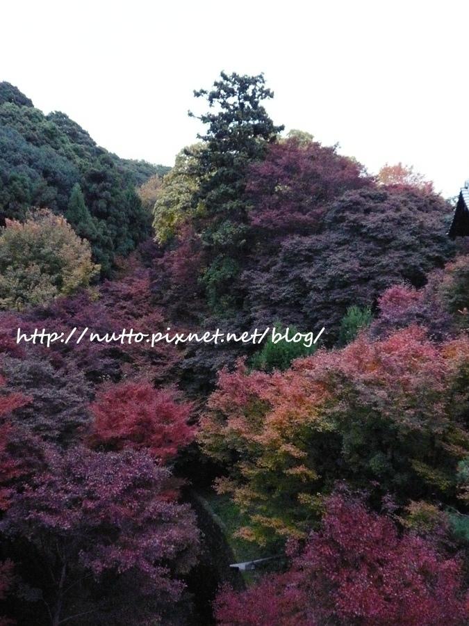 blog_22.JPG