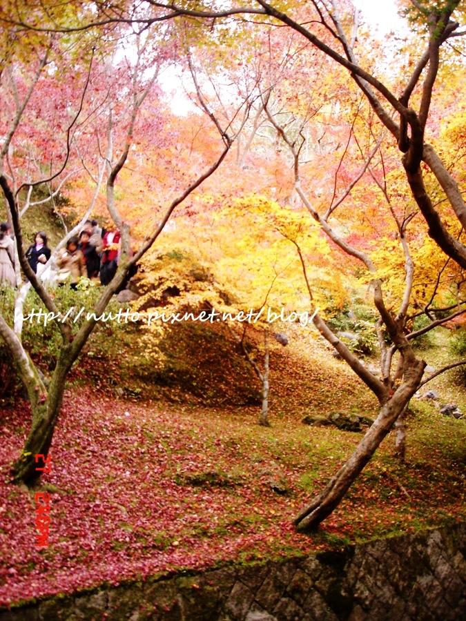 blog_26.JPG