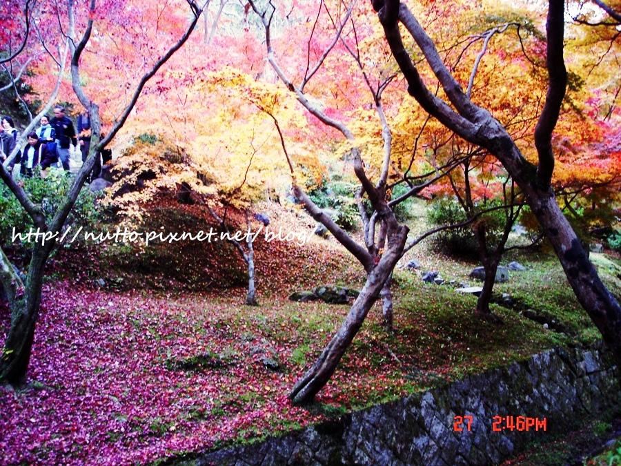 blog_28.JPG