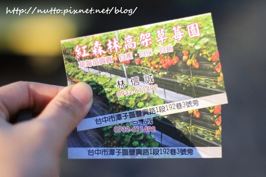 blog_34.JPG