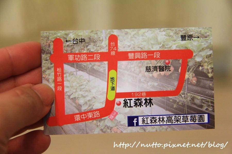 blog_35.JPG