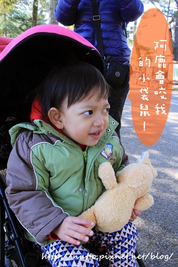 Nara_04.JPG