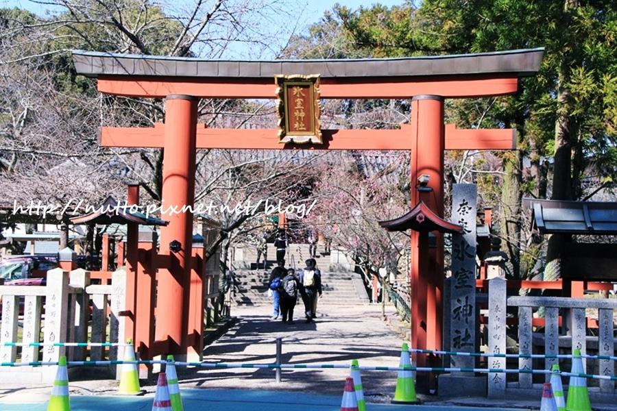 Nara_10.JPG
