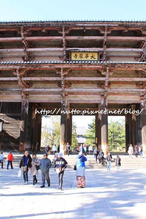 Nara_13.JPG