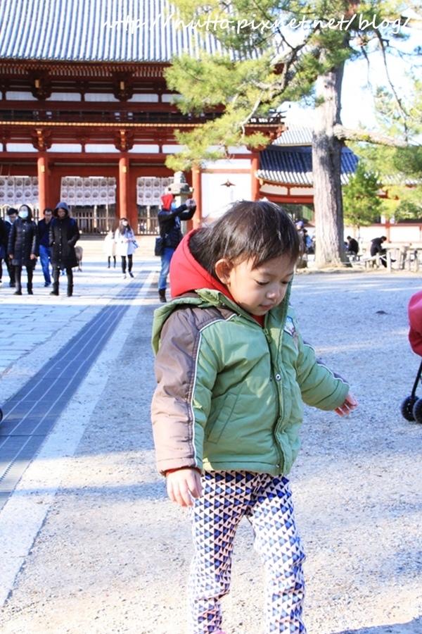 Nara_14.JPG