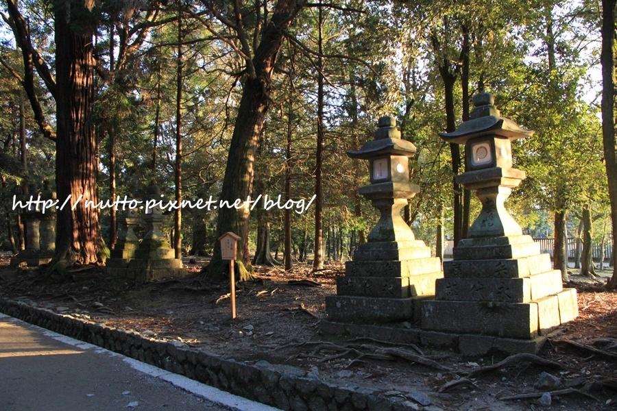 Nara_25.JPG