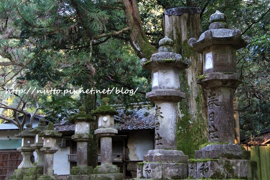 Nara_24.JPG