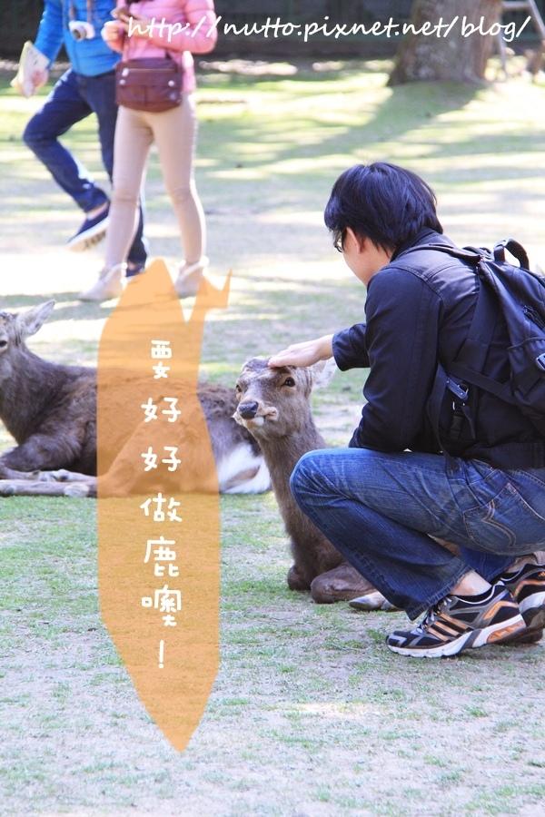 Nara_35.JPG