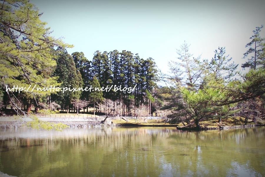 Nara_38.JPG