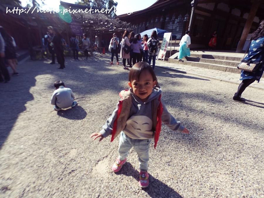 Nara_44.JPG