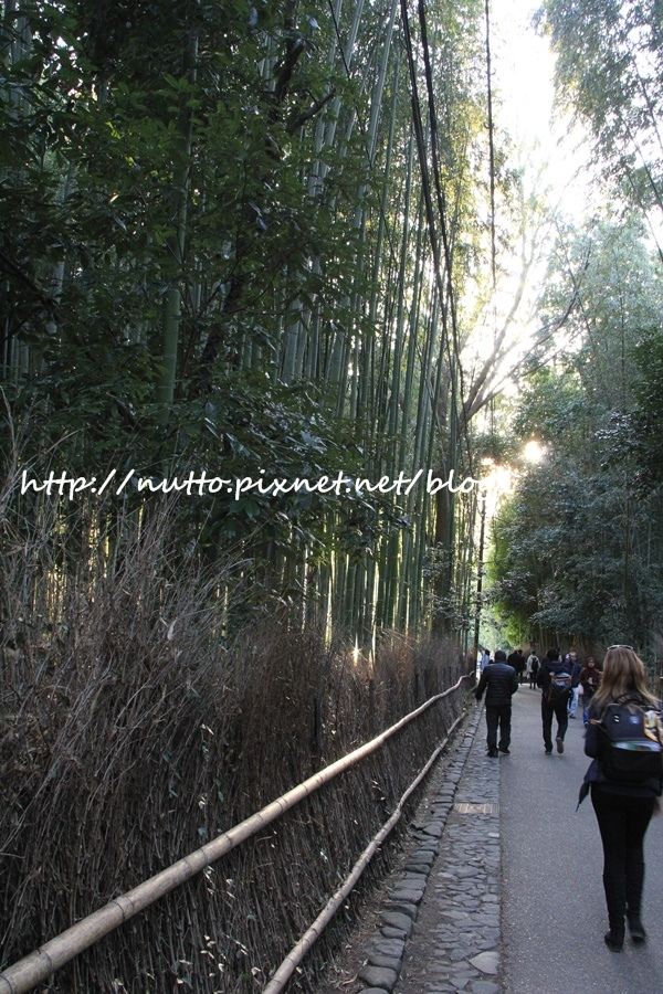 Kyoto_01_46.JPG