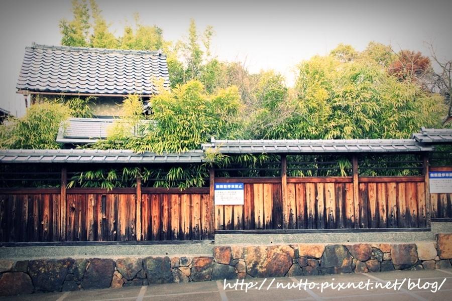 kyoto_02_19.JPG