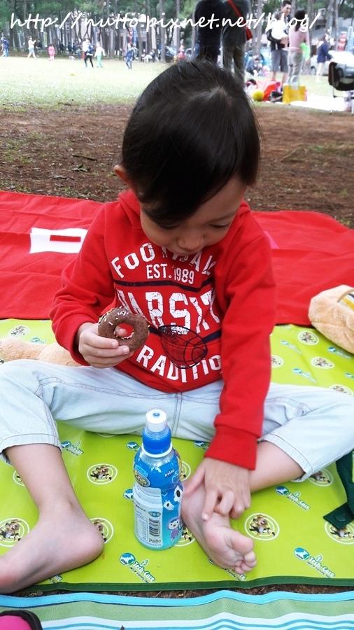 picnic_06.jpg