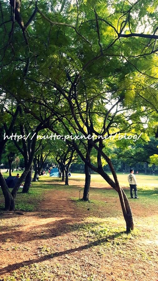 picnic_17.jpg