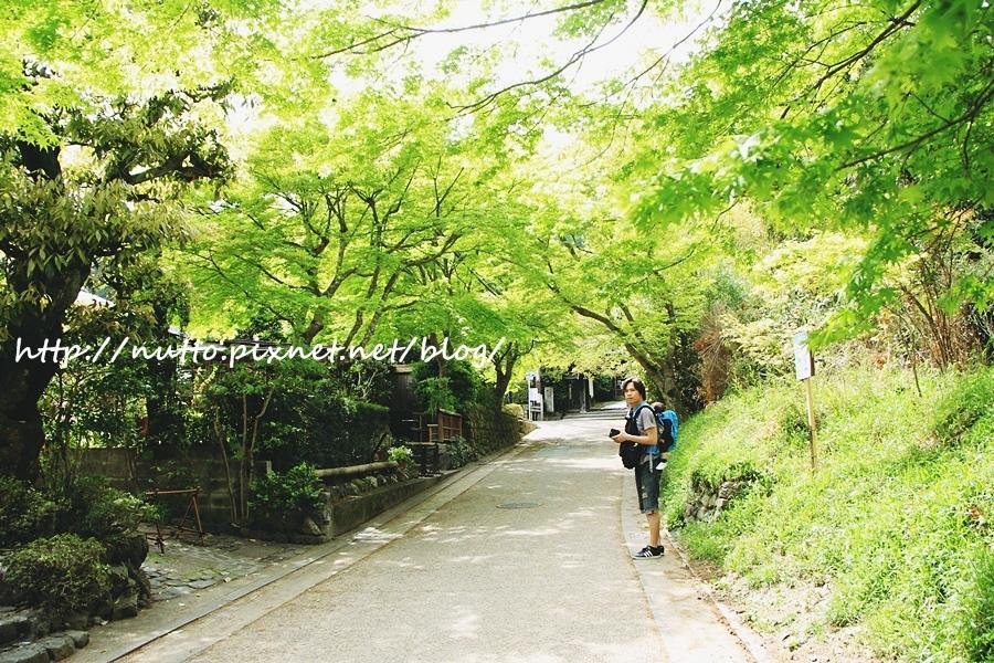 Japan_29.JPG