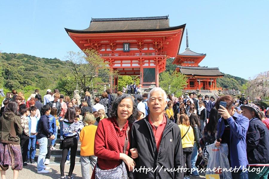 Japan_31.JPG
