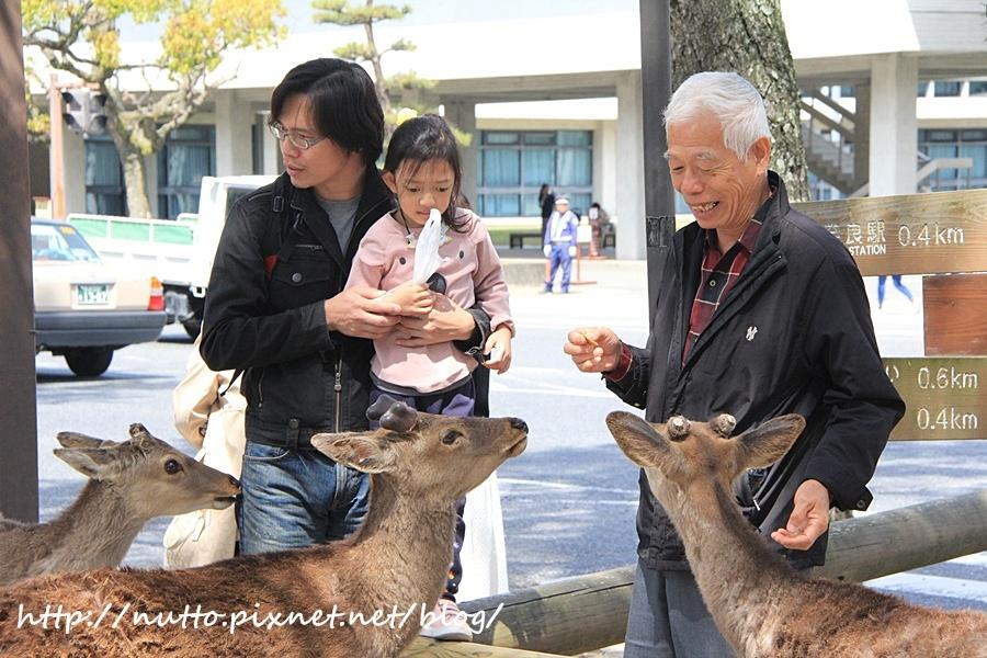 Japan_54.JPG
