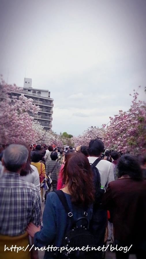 Japan_68.jpg