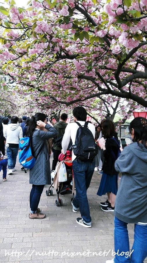 Japan_87.jpg
