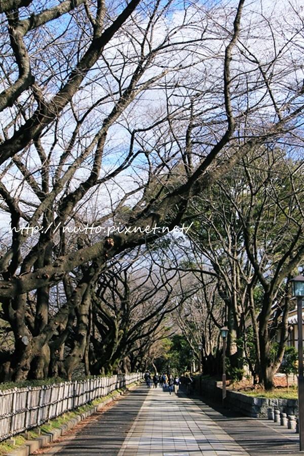 Nagoya_D2_24.JPG