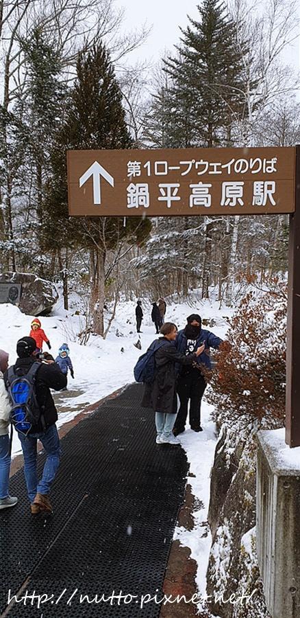 Nagoya_D4_75.jpg