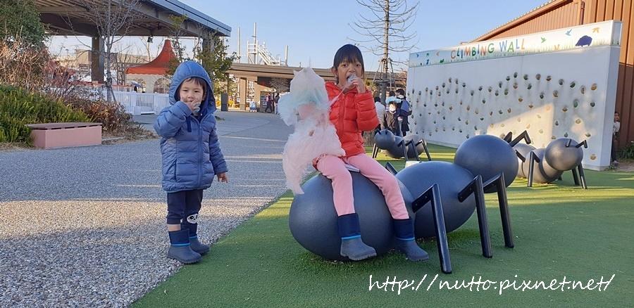 Nagoya_D6_20.jpg