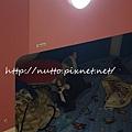 home_96.jpg