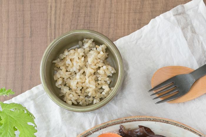 糙米飯.jpg