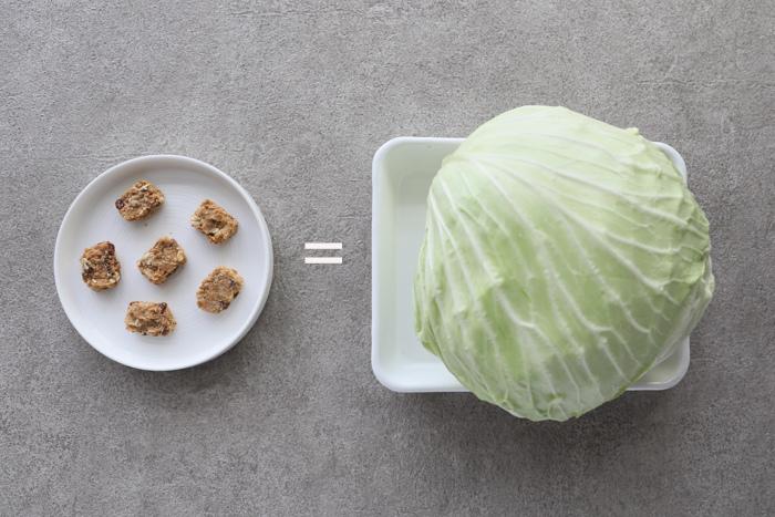 高麗菜-1.jpg