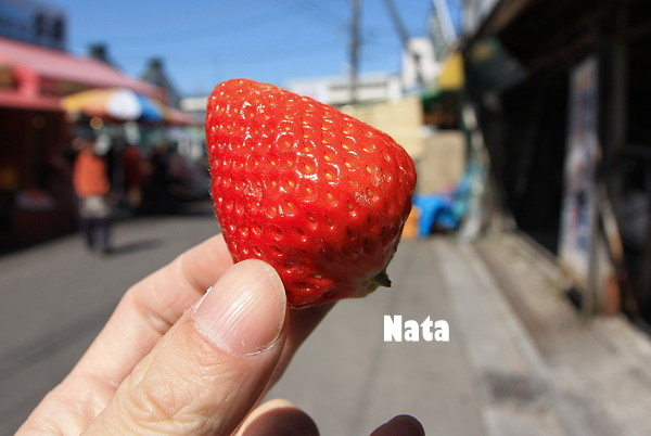 20.北海道的草莓.jpg