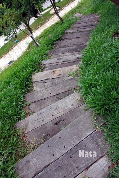 02.楓葉步道.jpg