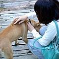 19.很喜歡狗的「狗狗」.jpg