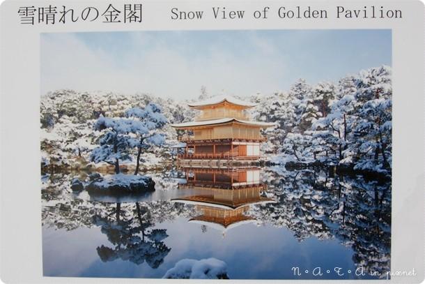 11.冬季的金閣寺.jpg