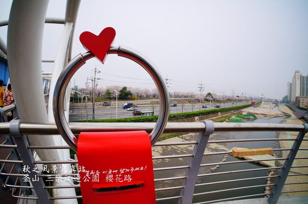 三樂公園櫻花路06