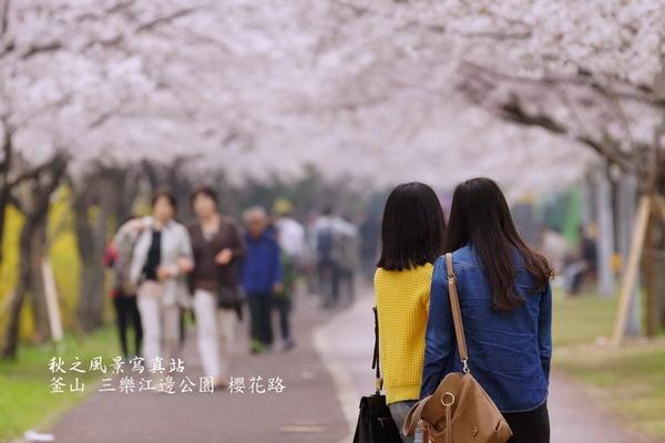 三樂公園11