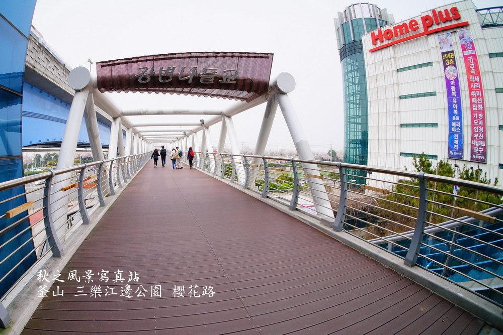 三樂公園櫻花路03