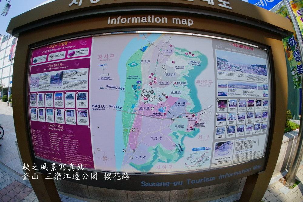 三樂公園櫻花路18