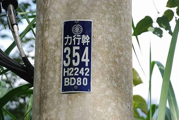 DSC_2454 (800x536).jpg