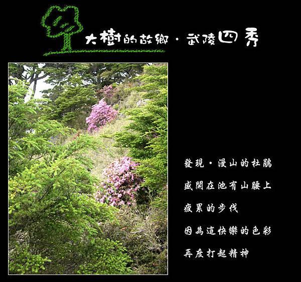 tree-08