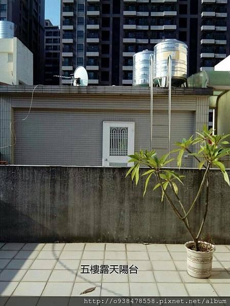 成功學區明亮美別墅 (14).jpg