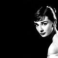 Audrey-9.jpg